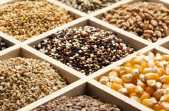 Variety of grains and seed in a box Royalty Free Stock Images