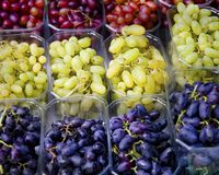Variety of Grapes. Isolated. Extreme Closeup stock photos