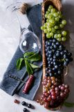 Variety of grapes Stock Photography