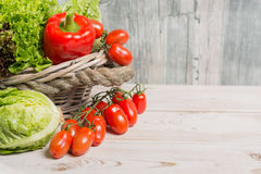 Variety of green and red fresh lettuce salad leaves, red paprika Stock Images