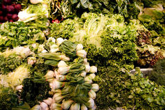 Variety of green vegetables produce Royalty Free Stock Photo