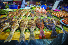 Variety of grilled seafood in Kota Kinabalu night market in Kota Kinabalu, Sabah Borneo, Malaysia. Selective focus, shallow DOF stock images