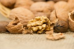 Peeled walnut detail with unfocused background. Variety of healthy nuts on rustic background Stock Photos