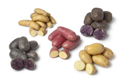 Variety of heirloom potatoes Stock Photos