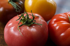 Variety Heirloom Tomatoes Stock Images