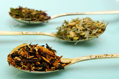 Variety of herbal tea Stock Image