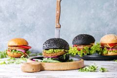 Variety of homemade burgers Royalty Free Stock Photography