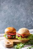 Variety of homemade burgers Royalty Free Stock Photo