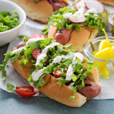 Variety of hot dogs with healthy garnishes Stock Image