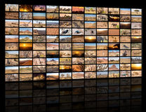 A variety of images of Namibia as a big image wall royalty free stock photography