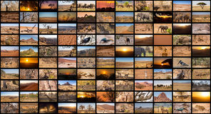A variety of images of Namibia as a big image wall, documentary. Channel royalty free stock photos