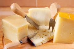 Italian cheeses Royalty Free Stock Photos