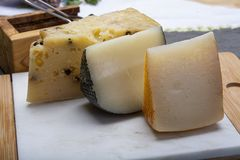 Variety of Italian pecorino cheeses, aged with black peppers from Nebrodi, white Il Palio and black molarotto, close up. Cheese collection, Variety of Italian stock photography