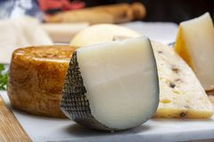 Variety of Italian pecorino cheeses, yellow aged, with black peppers from Nebrodi, white Il Palio and black molarotto, close up. Cheese collection, Variety of royalty free stock photography