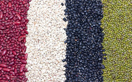Variety Of Job's Tears, Kidney Beans, Mung Beans And Black Beans. Royalty Free Stock Images