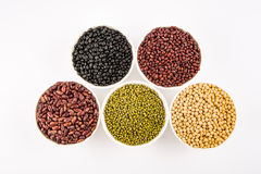 Variety of legumes Royalty Free Stock Photos