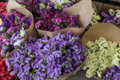 Variety of limonium sinuatum or statice salem flowers in blue, lilac, violet, pink, white colors bouquets of flowers in the greek. Garden shop. Horizontal Stock Photos