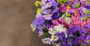 Variety of limonium sinuatum or statice salem flowers in blue, lilac, violet, pink, white, yellow colors in the greek garden shop. Variety of limonium sinuatum Stock Photo