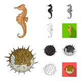 A variety of marine animals cartoon,black,flat,monochrome,outline icons in set collection for design. Fish and shellfish. Vector symbol stock  illustration Stock Photography