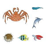 A variety of marine animals cartoon icons in set collection for design. Fish and shellfish vector symbol stock web. A variety of marine animals cartoon icons in Royalty Free Stock Images
