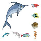 A variety of marine animals cartoon icons in set collection for design. Fish and shellfish vector symbol stock web. A variety of marine animals cartoon icons in Royalty Free Stock Photography
