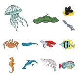 A variety of marine animals cartoon icons in set collection for design. Fish and shellfish vector symbol stock web. A variety of marine animals cartoon icons in Stock Photography