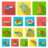 A variety of marine animals flat icons in set collection for design. Fish and shellfish vector symbol stock web. A variety of marine animals flat icons in set Royalty Free Stock Photos