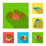 A variety of marine animals flat icons in set collection for design. Fish and shellfish vector symbol stock web. A variety of marine animals flat icons in set Stock Photography