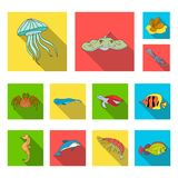 A variety of marine animals flat icons in set collection for design. Fish and shellfish vector symbol stock web Royalty Free Stock Photo