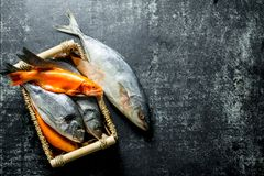 A variety of marine fish on the tray. On dark rustic background royalty free stock photo