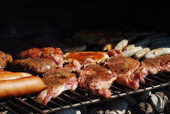 Variety of meat Royalty Free Stock Image