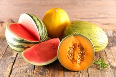 Variety of melon. And watermelon royalty free stock photography
