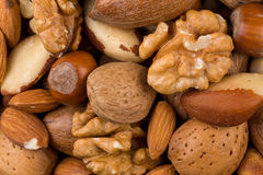 Variety of Mixed Nuts Royalty Free Stock Photo