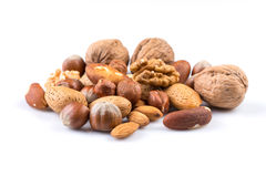 Variety of Mixed Nuts Royalty Free Stock Image