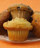 Variety of muffins Royalty Free Stock Images