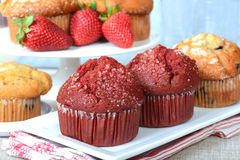 Variety of Muffins Royalty Free Stock Photos