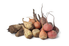 Variety of multi colored beets. Variety of  multi colored beets on white background Royalty Free Stock Image