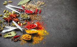 Variety of natural spices, seasonings and herbs in spoons Stock Images