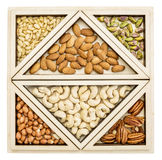 Variety of nuts abstract Stock Image