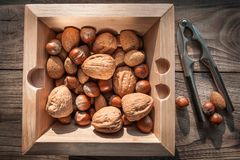 Variety of nuts with nutcracker on wooden background with metal nutcracker. royalty free stock photo
