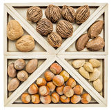 Variety of nuts in shells Royalty Free Stock Image