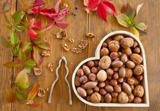 Variety of nuts Royalty Free Stock Photos