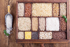 Variety Of Healthy Grains And Seeds Stock Photography