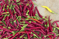 Variety Of Hot Peppers Royalty Free Stock Photos
