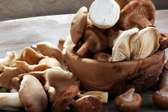 Free Variety Of Raw Mushrooms On Grey Table. Oyster And Other Fresh M Stock Photos - 117390613