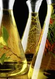 Variety of olive oil Royalty Free Stock Images