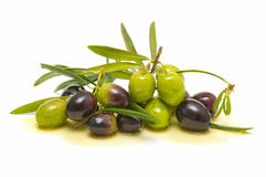 Variety of olives. Variety of fresh olives with olive oil on white background Stock Images
