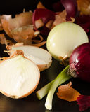 Variety of onions with its husk on black Royalty Free Stock Photos