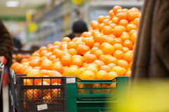 Variety of oranges on boxes in supermarket Royalty Free Stock Photo