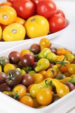 Variety of organic heirloom tomatoes Stock Photography